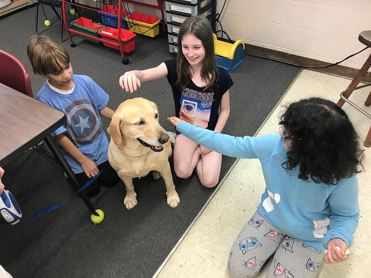 Therapy Dogs IGPR
